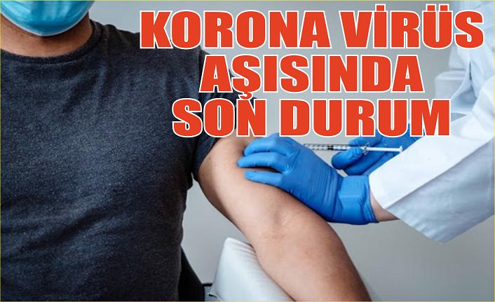 Aşı kimlere ve nerede yapılacak? Koronavirüs aşısında son durum...