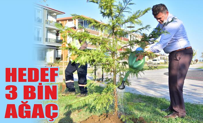 Sarı: Yeşil bir Karasu için ağaçlandırma çalışmalarımız devam edecek