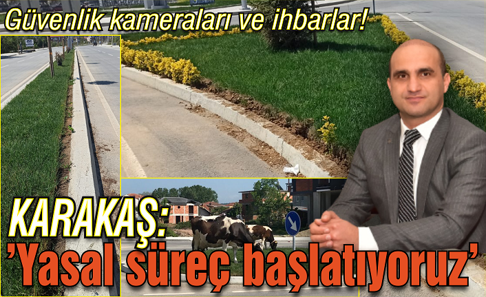 Karasu'da çiçek ve çimleri koparanlara yasal süreç başlatıldı!