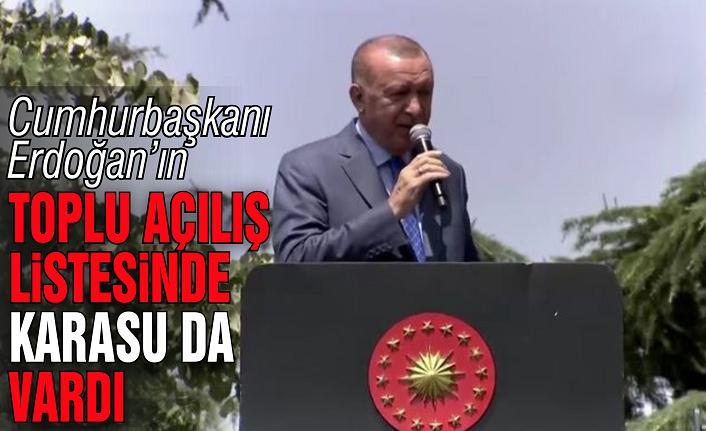 Cumhurbaşkanı Erdoğan'ın listesinde Karasu da vardı