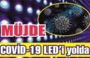Müjde: Covid-19'u LED ışınları yok edecek