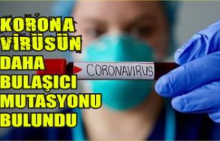 Koronavirüs mutasyona uğradı: Artık daha bulaşıcı...