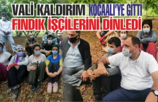 Vali Kaldırım Kocaali'de fındık işçilerini...