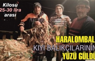 Haralombalı balıkçıların yüzü güldü