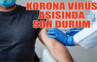 Aşı kimlere ve nerede yapılacak? Koronavirüs aşısında...