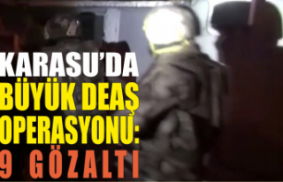 Karasu'da DEAŞ Operasyonu: 9 kişi yakalandı