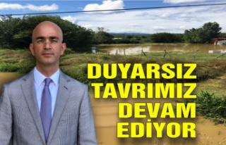 Serbes; 'Duyarsız tavrımız devam ediyor'
