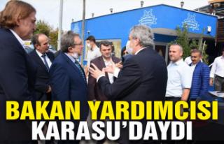 Bakan yardımcısı Karasu'daydı