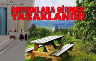 Sakarya'da ormanlara giriş yasaklandı!